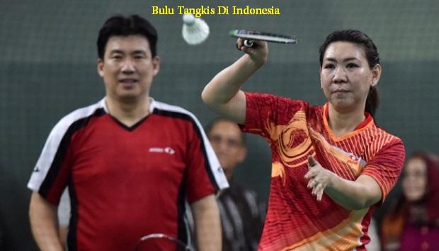 Pemain Bulu Tangkis Di Indonesia